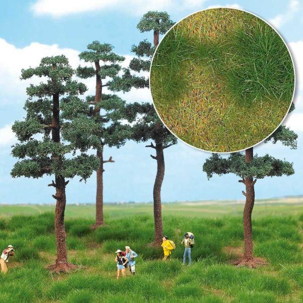 »Groundcover«-Bodendecker: Heideland