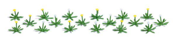 18 Löwenzahnpflanzen