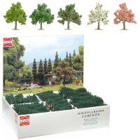 Großpackung: 64 Obst- und Blütenbäume