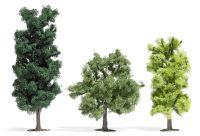 3 Laubbäume
