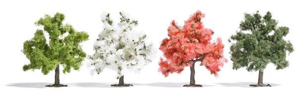 4 Obstbäume
