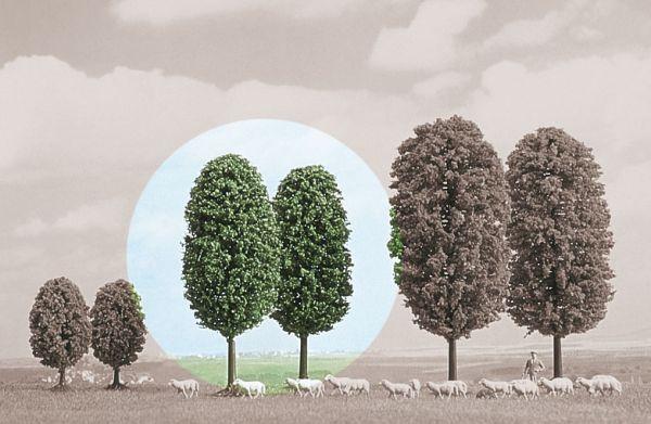 2 Laubbäume