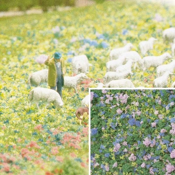 Blütenflocken Krokusblüte