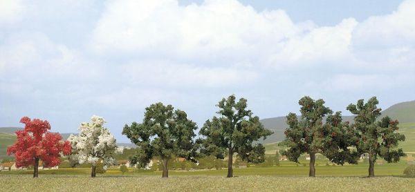 2 Obstbäume