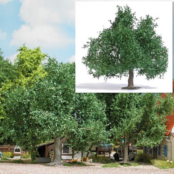 Obstbaum/kleine Eiche 95 mm, Sommer