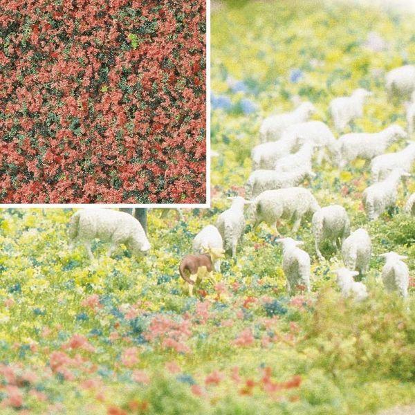 Blütenflocken Heide