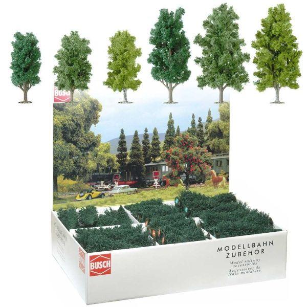 Großpackung: 36 Laubbäume