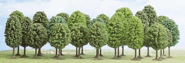 25 Laubbäume
