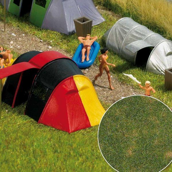 »Groundcover«-Bodendecker: Sommergras